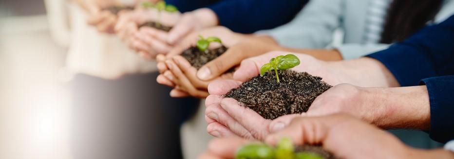 Sustentabilidade na construção civil: entenda a importância e como praticar